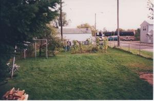 Tom's backyard